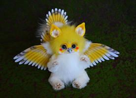 Griffin - parrot