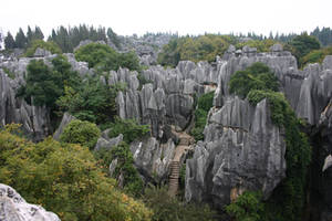stone forest 7 by fa-stock