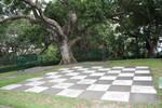 Chess board 3700