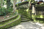 Mossy stairs 9621