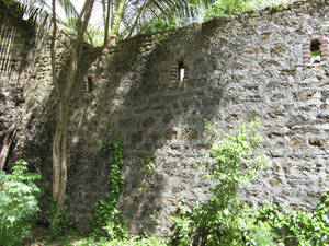Old stone wall 167