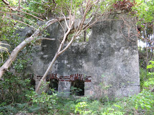 Old house ruins 196