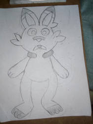 Drew Scorbunny because I was bored