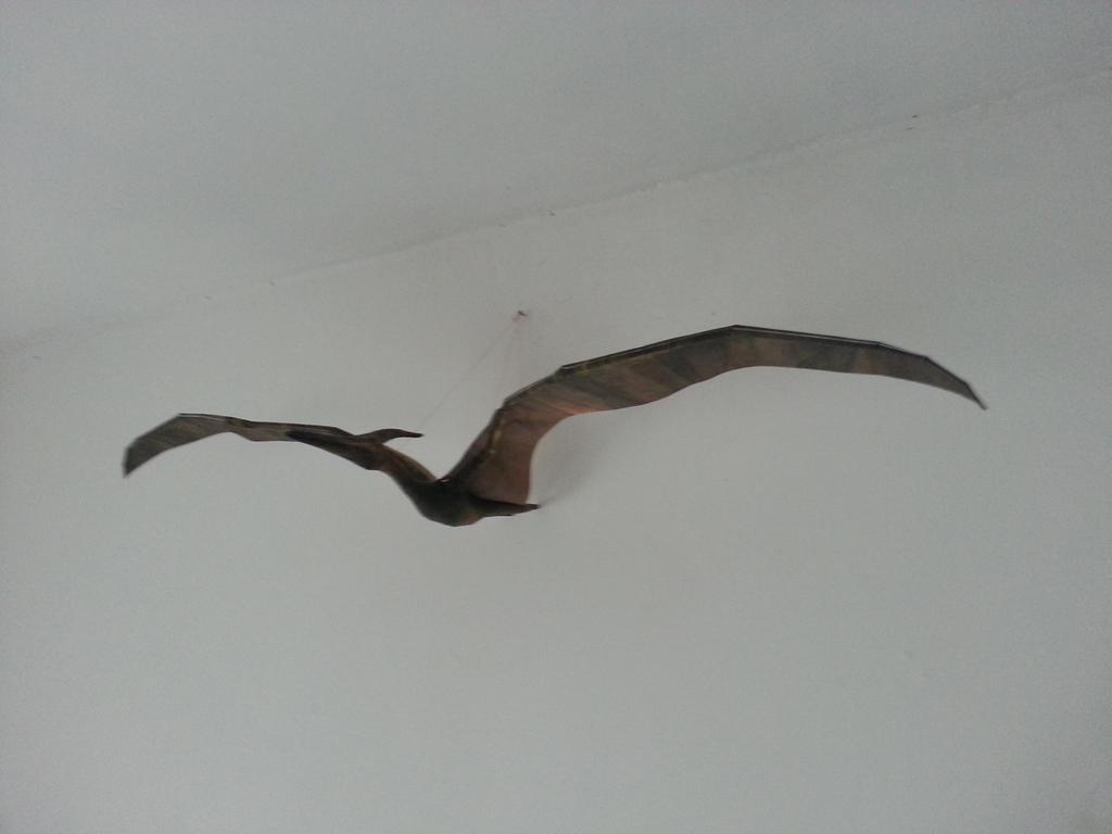 Pteranodon Papercraft 02 by Alejandr0-M