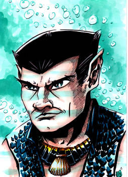Namor Lord of the Oceans