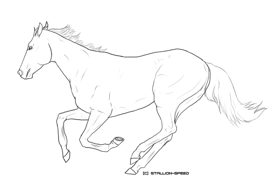 thoroughbred coloring pages - photo#16