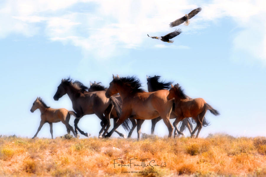 Eagles And Horses