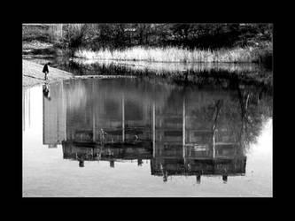 Zabka Kopie by petrpedros