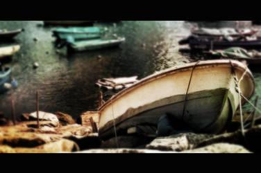 Ashore by macsa