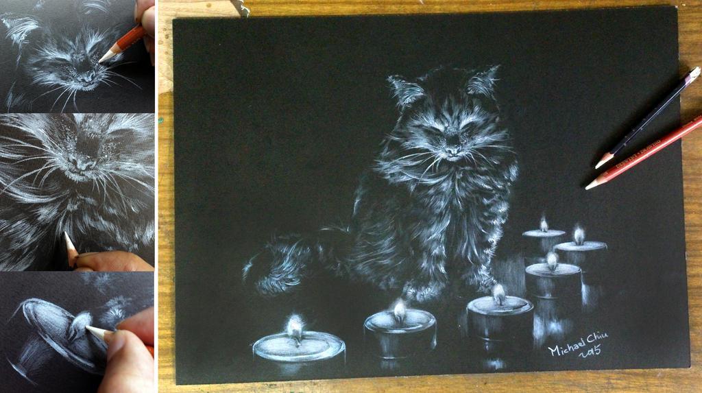 Cat in meditation by Michael-Chiu-2013