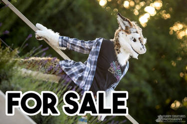 Sergal partial for sale