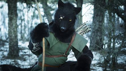 Atreus wolf by DireCreatures