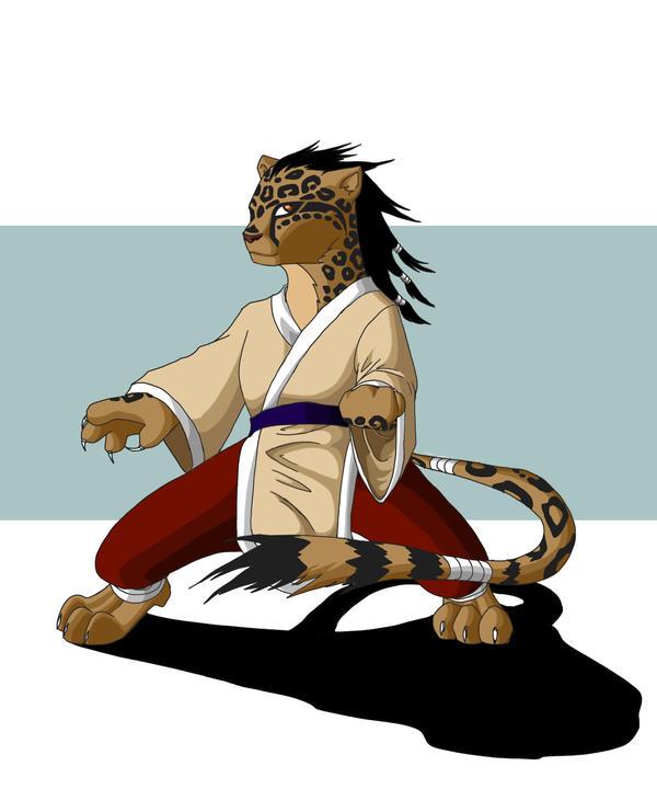 Kung fu cheetah by Kashirohato