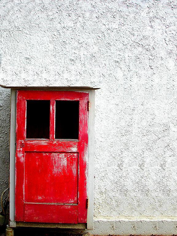 Red by Ania-Riz