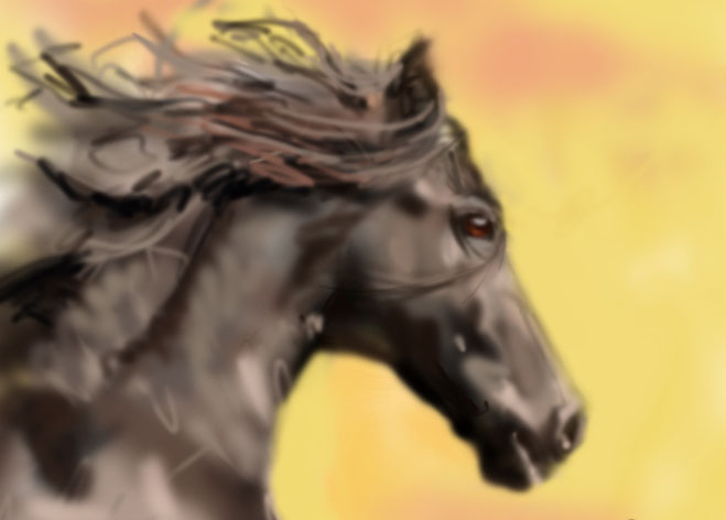 horse by MichalBednarczyk
