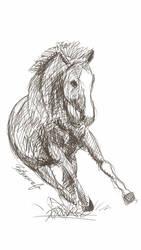 Horse Galaxy Note 2