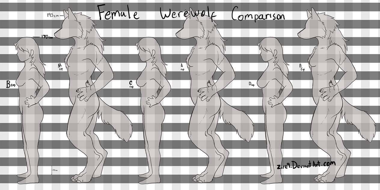 Werewolf chest chart by Zire9