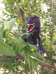 Indoraptor in the trees by Hellblaze