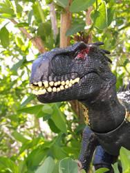Indoraptor's face