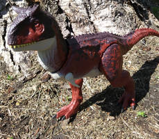 Carnotaurus prowling