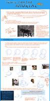 Canine Tut Pt1 - Muzzles, Eyes