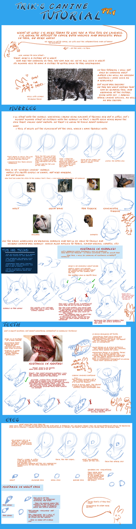 Canine Tut Pt1 - Muzzles, Eyes by Jeakilo