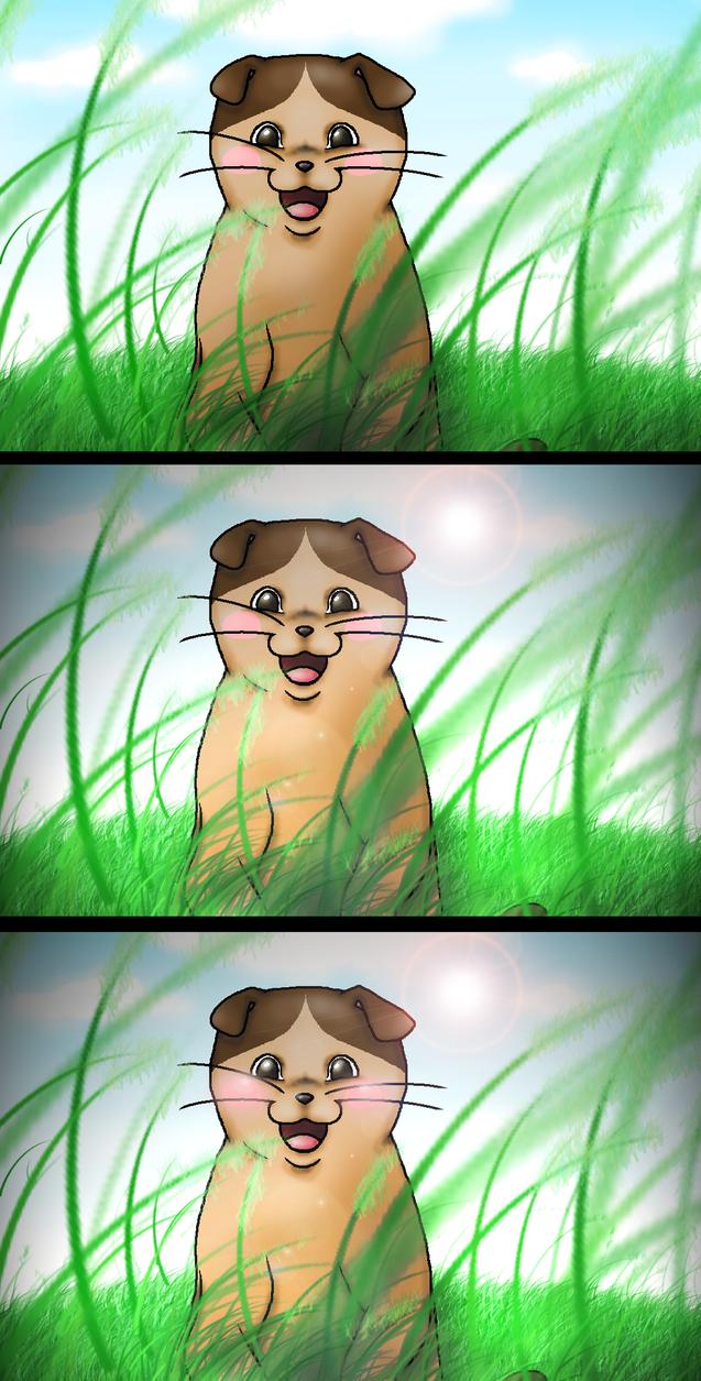 Natoru from The cat returns by RainbowHanako