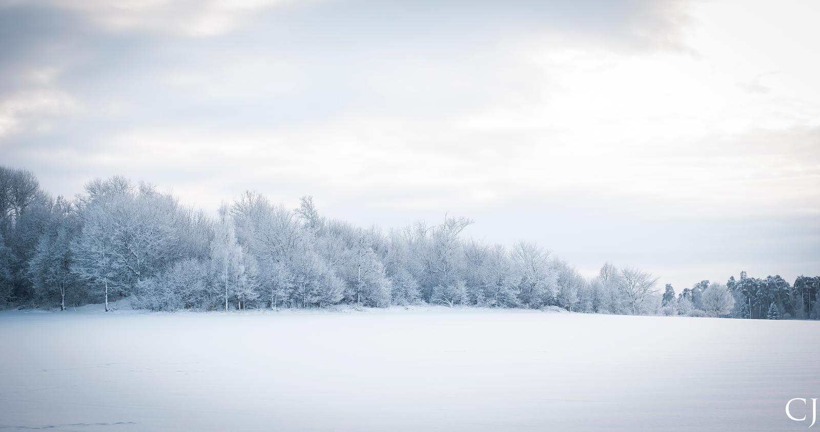 Winter landscape by CJacobssonFoto
