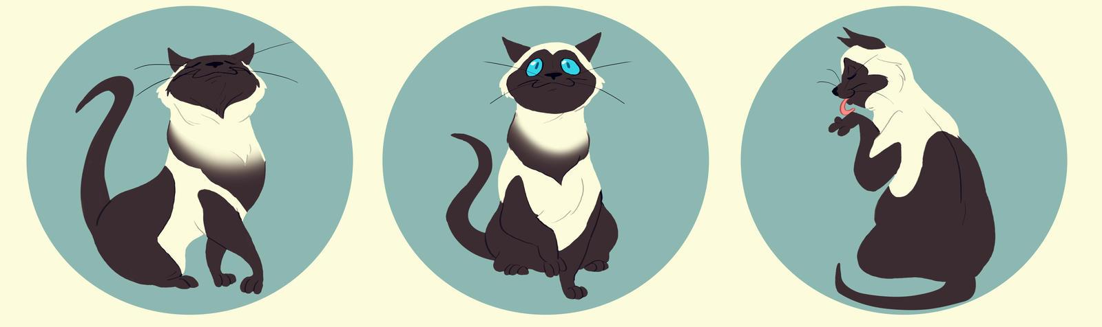 Uma Kitty by dodgyrommer