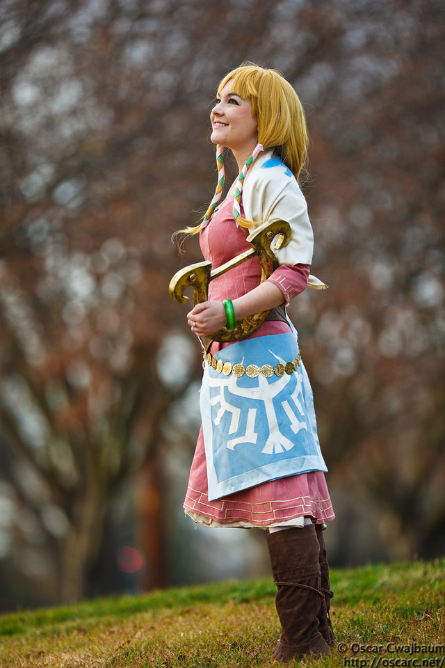 Zelda: Looking Skyward by bekalou-cosplay