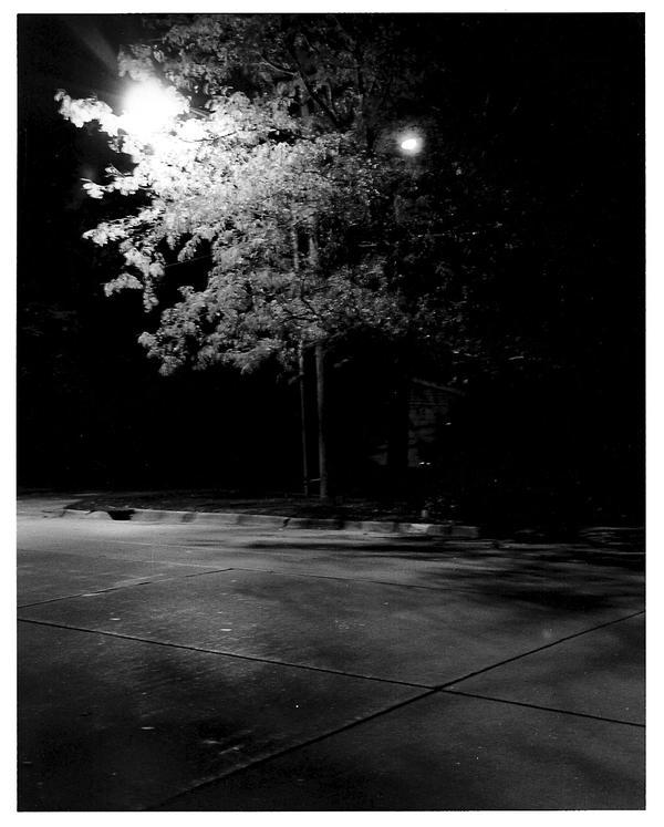 Spooky streetlight by twofuzzysumos