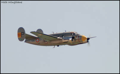 Dassault Flamant (3) by Moth-Wingthane