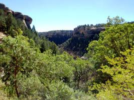 Mesa Verde 071