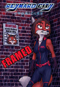 Writing Prompt 10: Framed