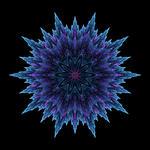 Aquaria ZOOM by seanwendt