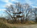Makeshift tree verandas