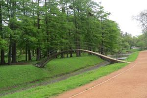 Bridge to the islet of trees