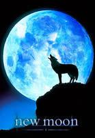 New Moon Poster by RaithsEnvyMe