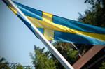 The Swedish pennant