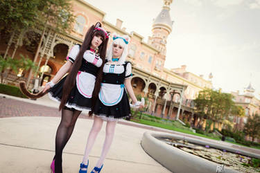 Nekopara Cosplay by EroticNeko