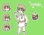Indigo Reference