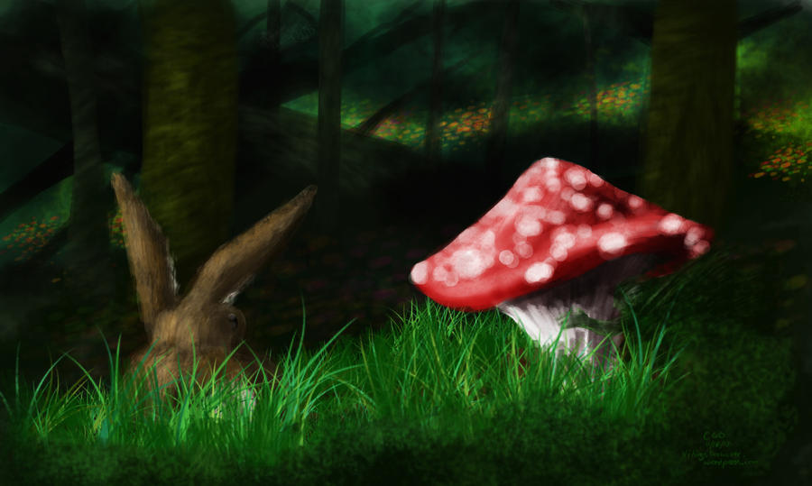 Forest Floor Speedpaint by Callego