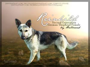 Reinhild