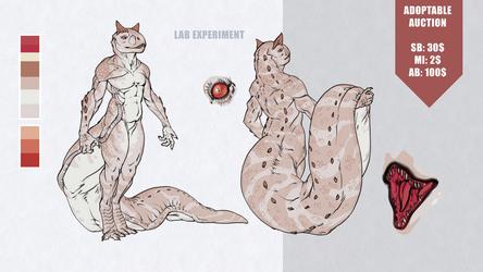 [CLOSED] Auction: Lab Experiment