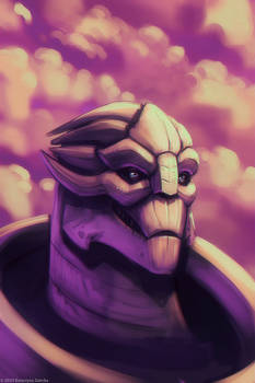 Turian for N7 day
