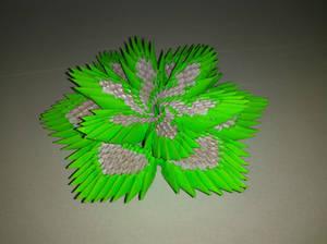 origami _10