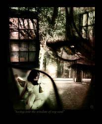 Window of my Soul by enii