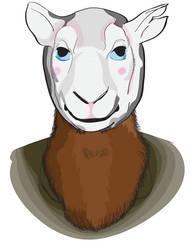Portrait of a Rowan