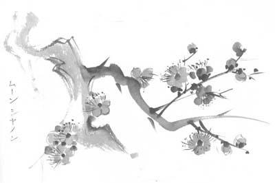 Sakura by shadowolf