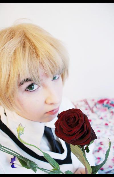 Sellheim's Profile Picture